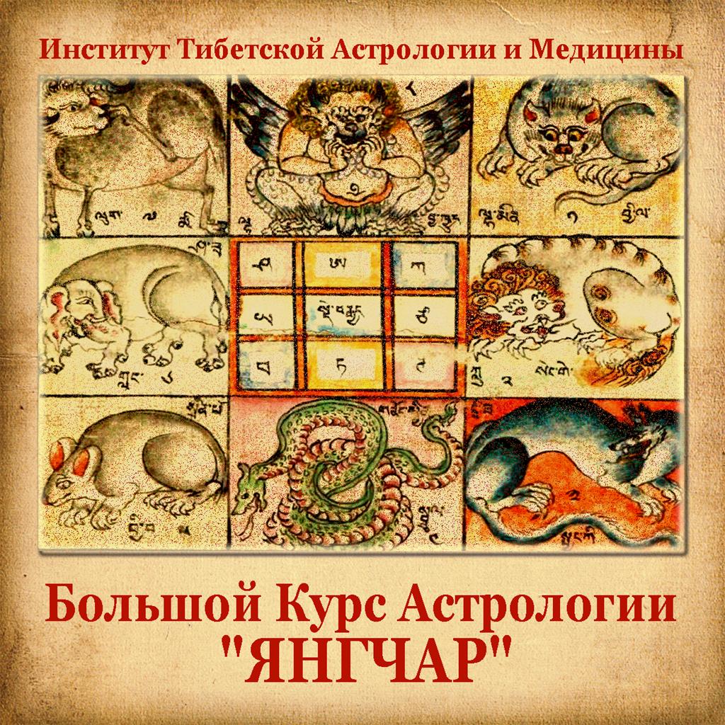 Большой Курс Астрологии «ЯНГЧАР»