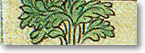 тибетская астрология, Астрологические характеристики элемента года рождения - ИТАМ